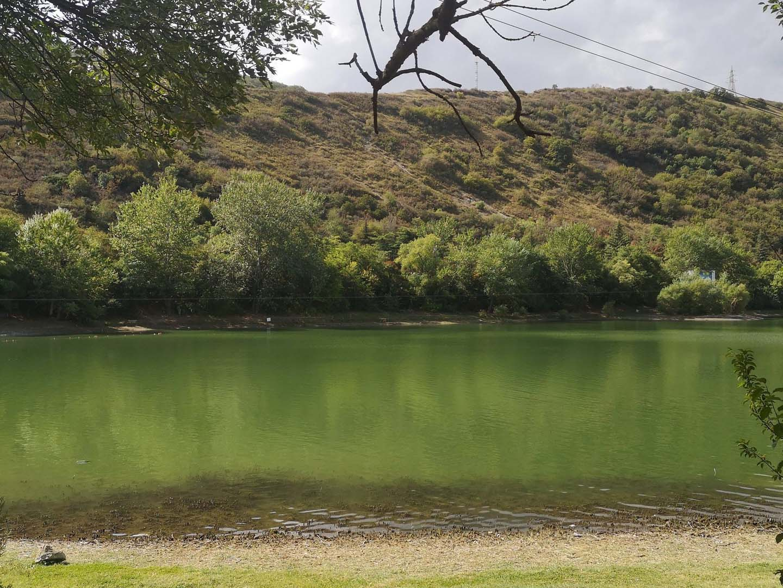 turtle lake tbilisi georgia