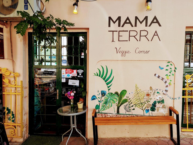 tbilisi vegetrian vegan restraurant mama terra